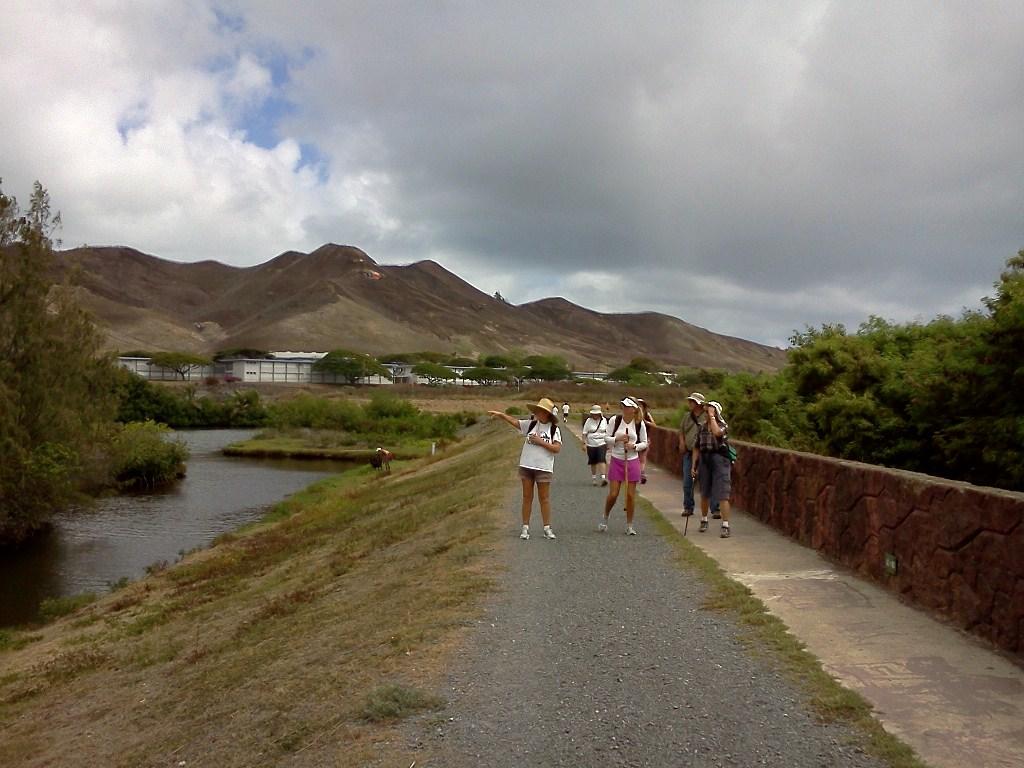 Quarry Shade Garden At Bon Air Park: September 2012 Journal Photos